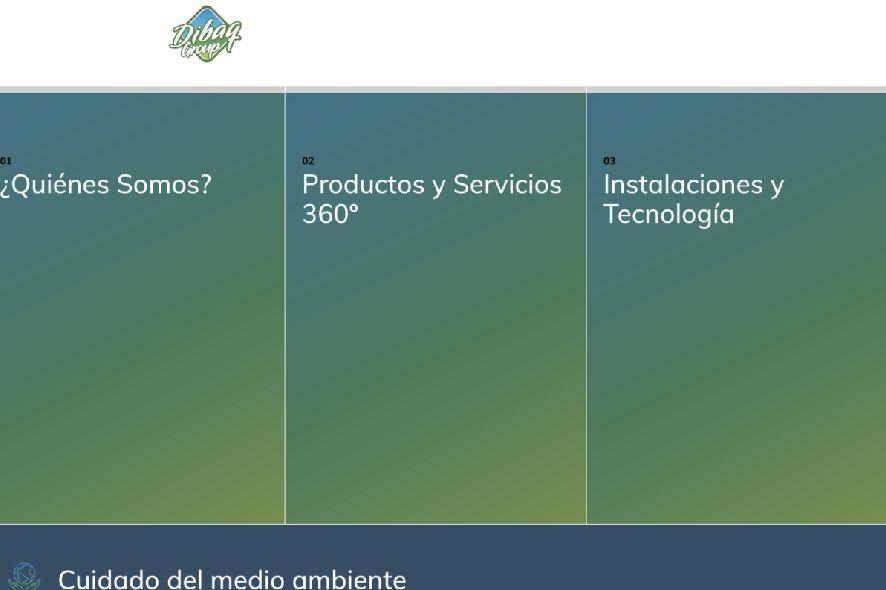 Imagen de la nueva web de la compañía.