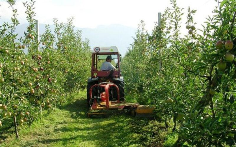 programa dirigido a gerentes, técnicos y mandos intermedios de cooperativas agroalimentarias