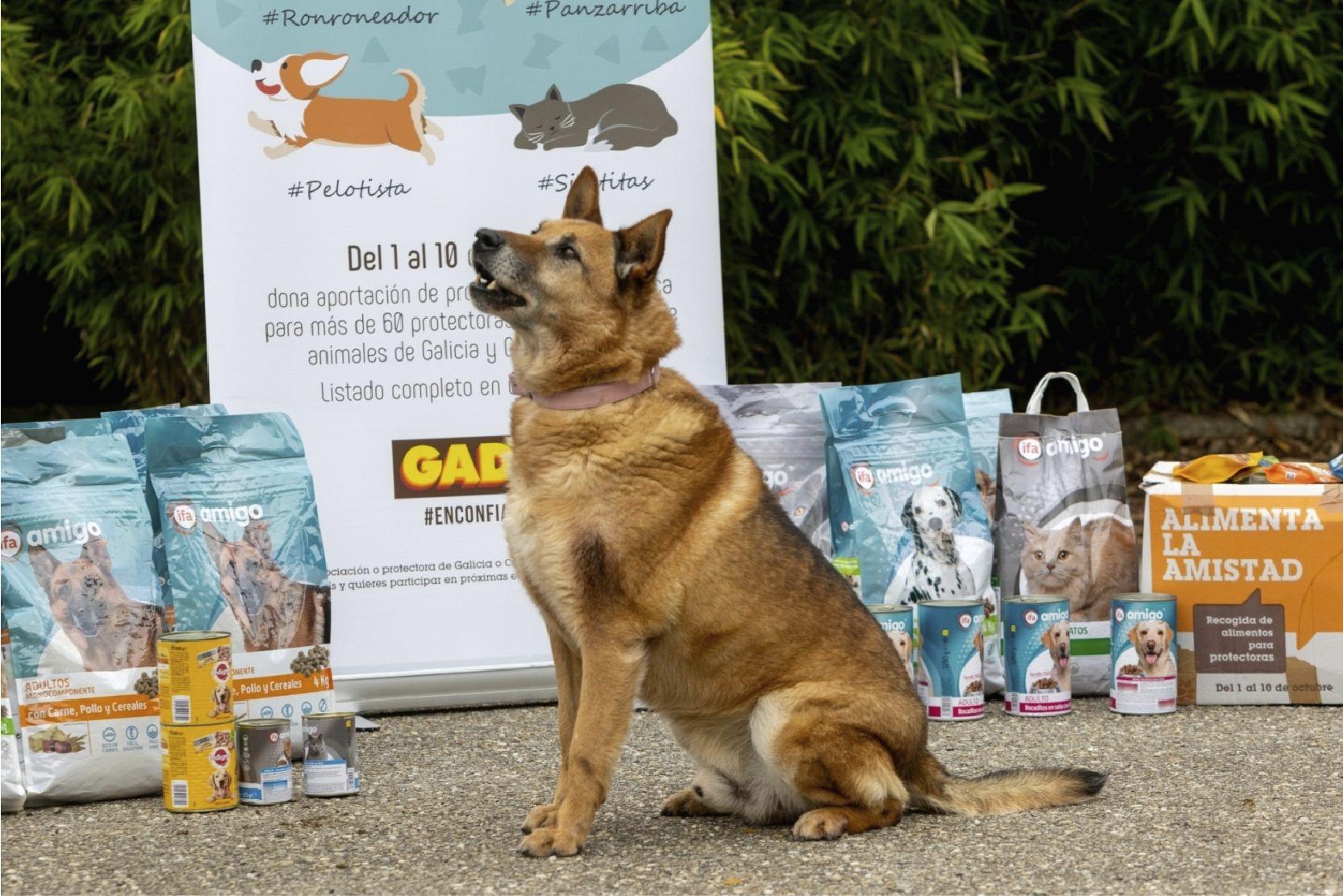 Perro con los productos recogidos